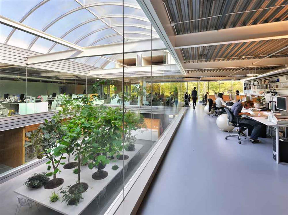 interior photo of an office space with a central interior courtyard